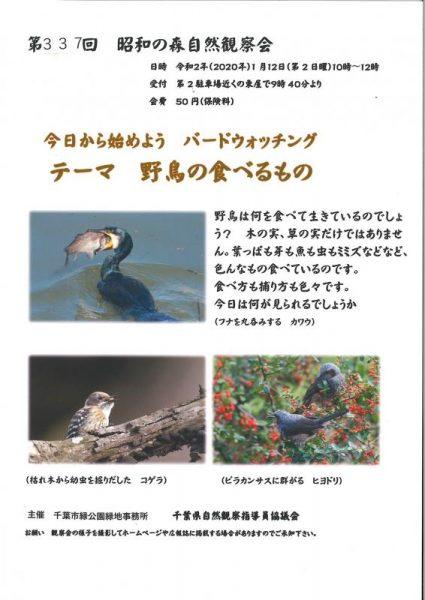 第337回 昭和の森自然観察会「今日から始めようバードウォッチング~野鳥の食べるもの~」@昭和の森<1/12(日)>