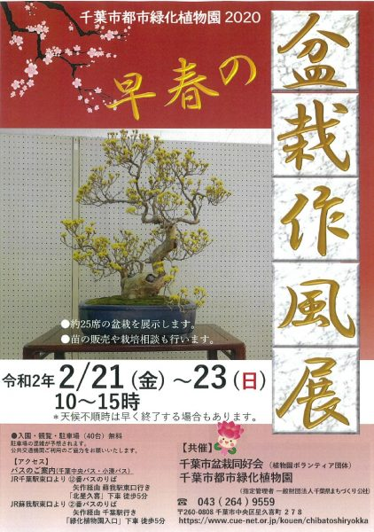 早春の盆栽作風展@千葉市都市緑化植物園<2/21(金曜)~2/23(日曜)>