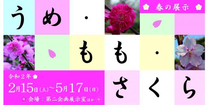 春の展示 うめ・もも・さくら@千葉県立中央博物館<2/15(土)~5/17(日)>