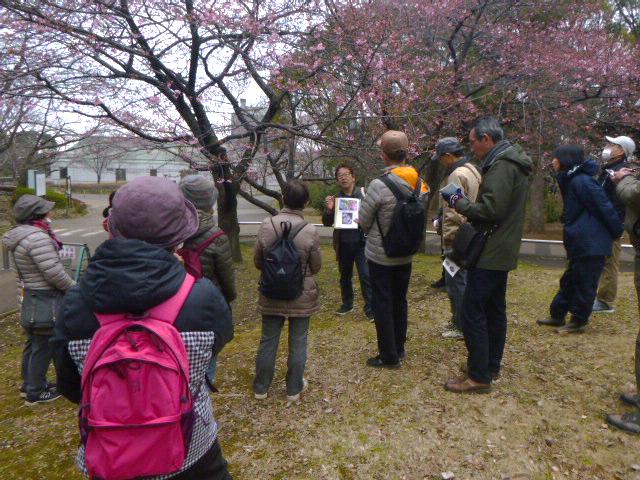 季節を感じる自然観察会@青葉の森公園<2/27(木)>