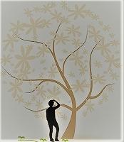 樹木医と歩こう「早春の植物園 」@千葉市都市緑化植物園<2/29(土曜)>
