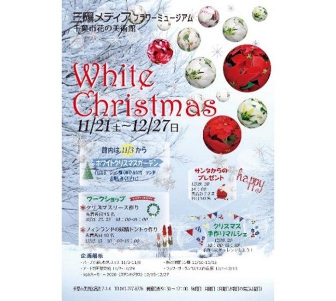 ホワイトクリスマス@三陽メディアフラワーミュージアム<11/21(土曜)~12/27(日曜)>