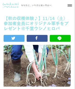 【秋の収穫体験♪】11/14(土曜)@千葉ウシノヒロバ