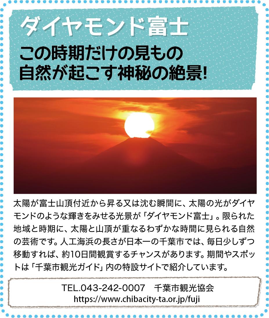 観光情報02