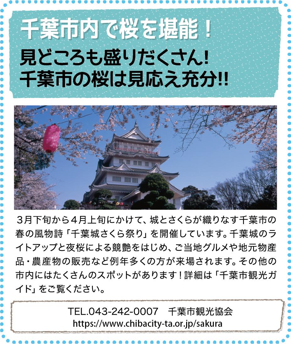 観光情報03