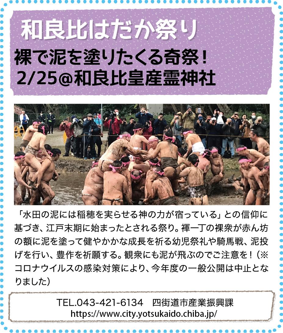 観光情報05