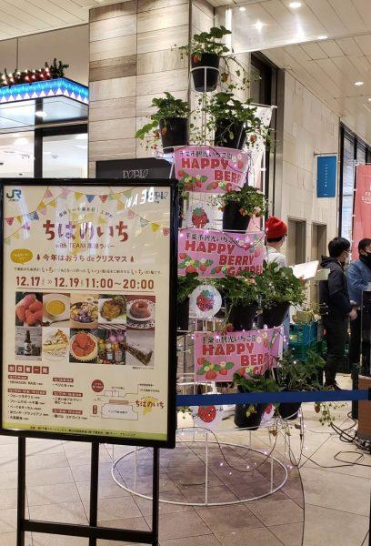 「ちばのいち with TEAM 黒潮ラバー」開催!!@JR千葉駅<12/17(木曜)~19(日曜)>