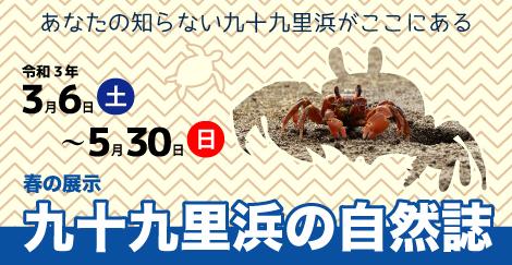春の展示 「九十九里浜の自然誌」@千葉県立中央博物館<3/23(土曜)~5/30(日曜)>