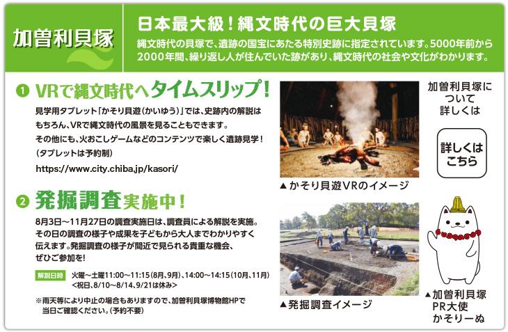 加曽利貝塚:日本最大級!縄文時代の巨大貝塚