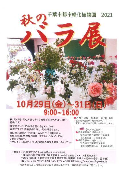 秋のバラ展@千葉市都市緑化植物園<10/29(金曜)~10/31(日曜)>