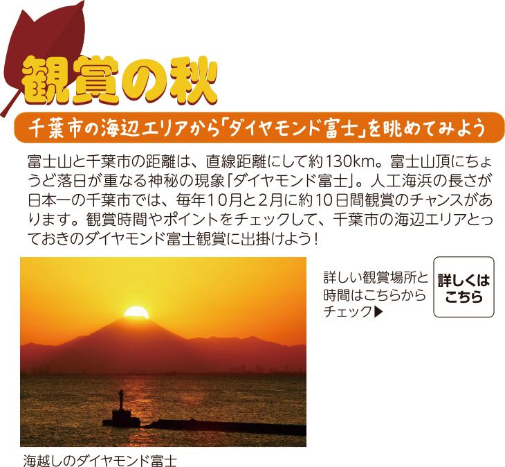 [鑑賞の秋]千葉市の海辺エリアから「ダイヤモンド富士」を眺めてみよう